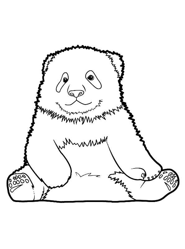 Disegno 6 di panda da stampare e colorare