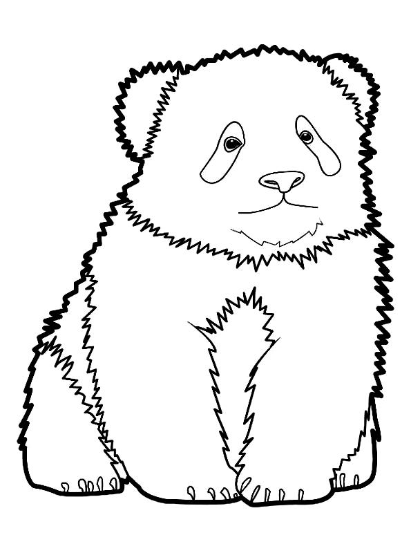 Disegno 7 di panda da stampare e colorare