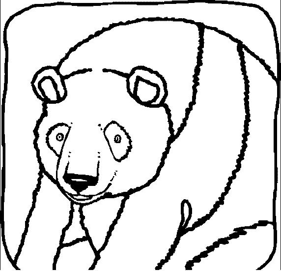 Disegno 8 di panda da stampare e colorare