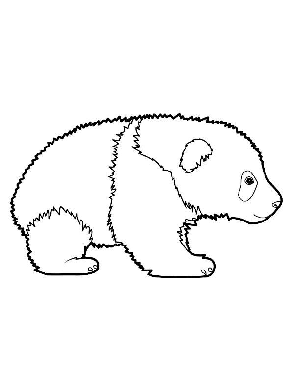 Disegno 9 di panda da stampare e colorare