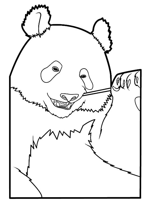 Disegno 14 di panda da stampare e colorare