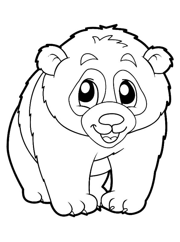 Dibujo 19 de Panda para colorear