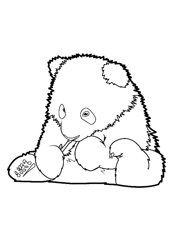 Disegno 22 di panda da stampare e colorare