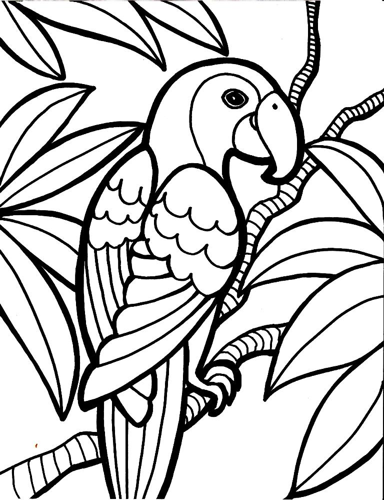Disegno 7 di pappagalli da stampare e colorare