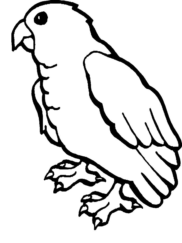 Disegno 9 di pappagalli da stampare e colorare