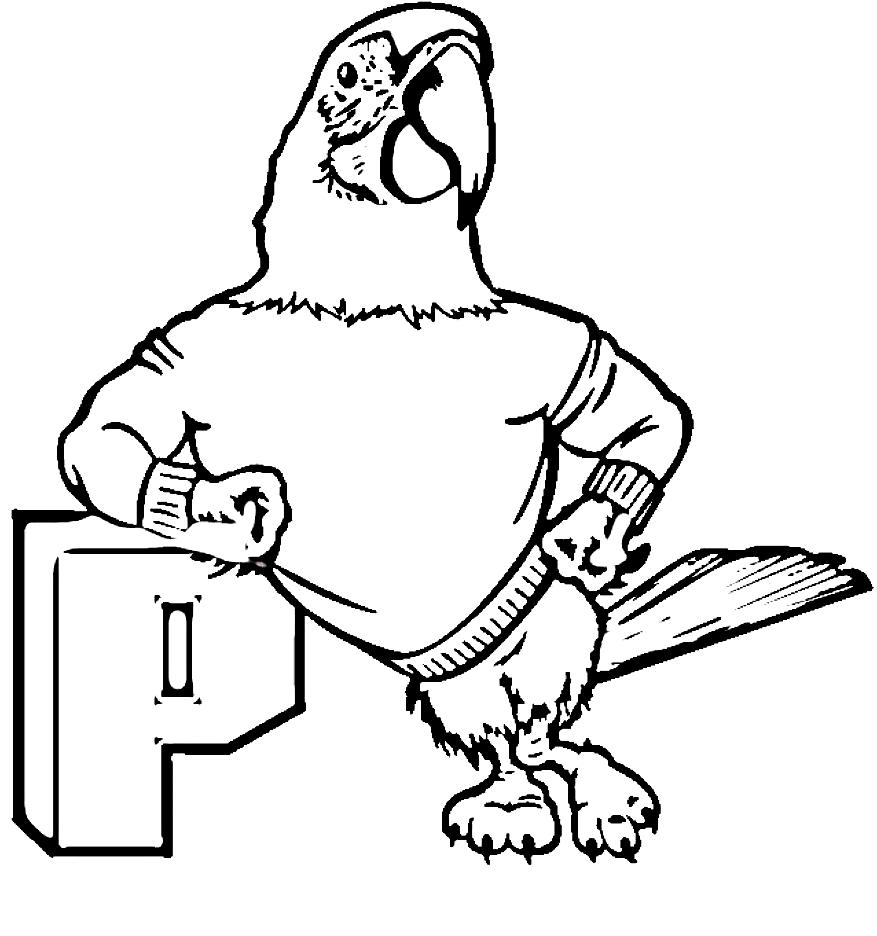 Disegno 18 di pappagalli da stampare e colorare