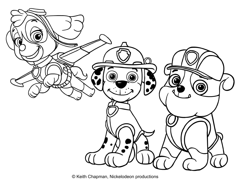 Disegno da colorare di skye marshall e rubble for Immagini paw patrol da colorare