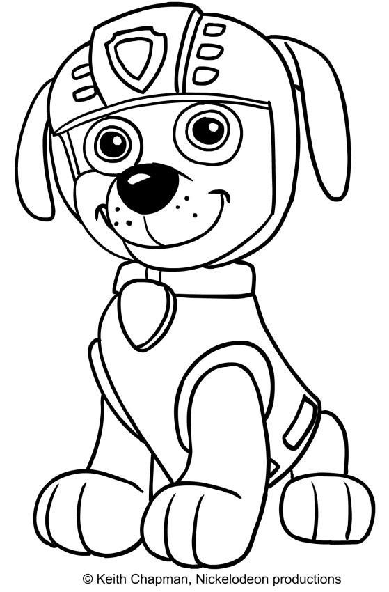 Disegno da colorare di zuma seduto e sorridente for Disegni da stampare paw patrol