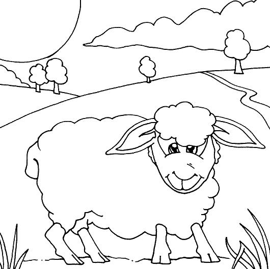 Disegno 13 di pecore da stampare e colorare