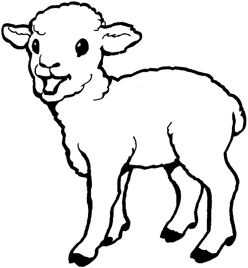 Dibujo 19 de oveja para imprimir y colorear