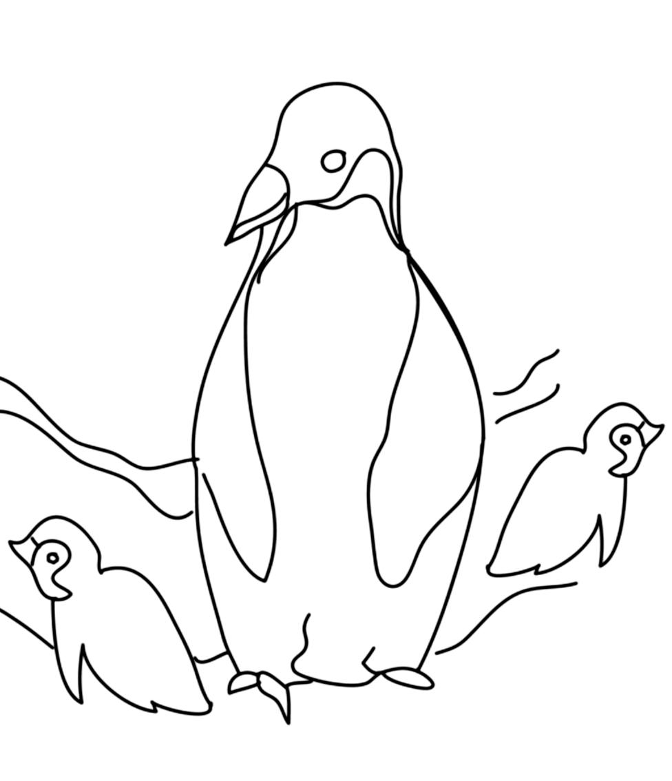 Disegno 8 di pinguini da stampare e colorare