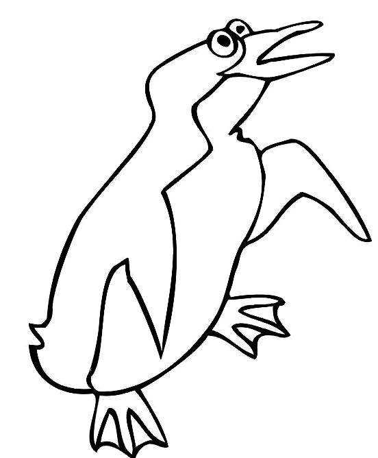 Disegno 14 di pinguini da stampare e colorare