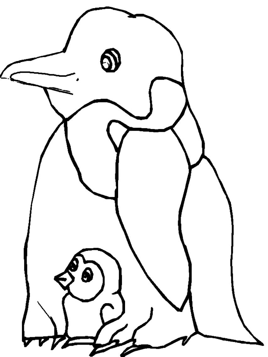 Disegno 24 di pinguini da stampare e colorare