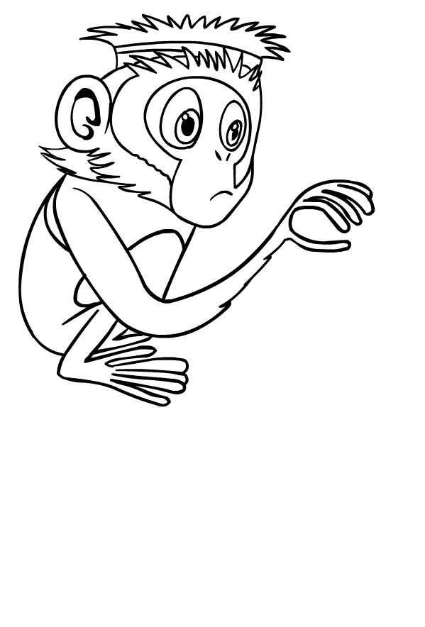 Steve el mono está lloviendo albóndigas para imprimir y colorear