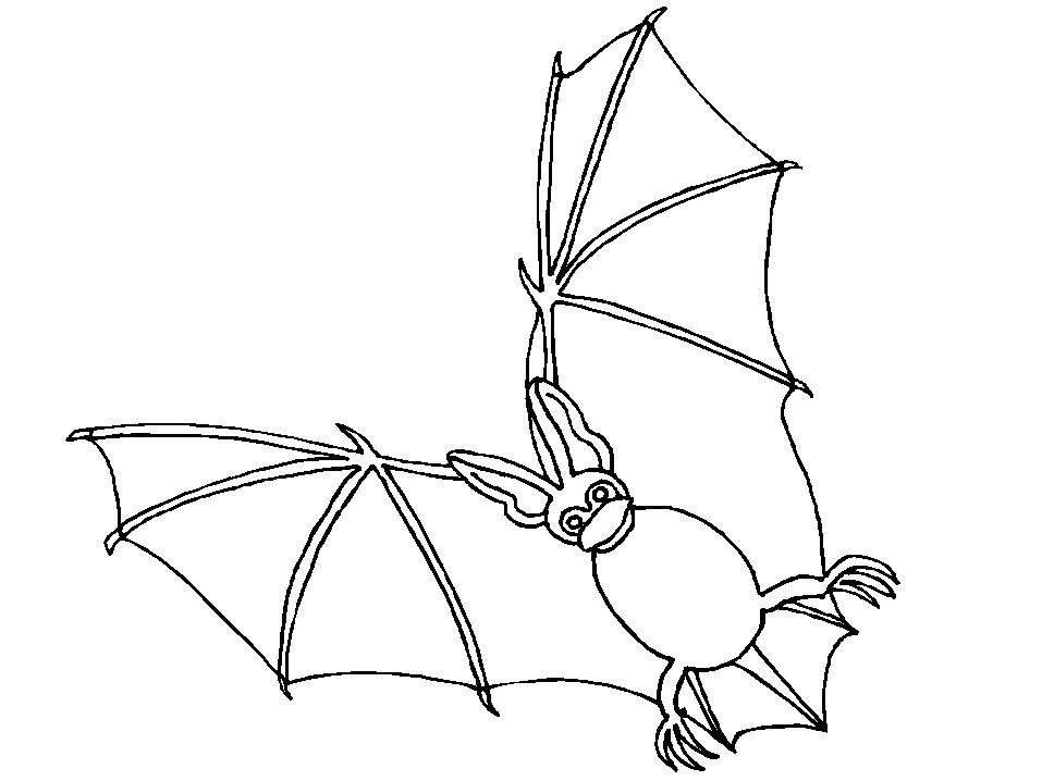 Disegno 17 di pipistrelli da stampare e colorare