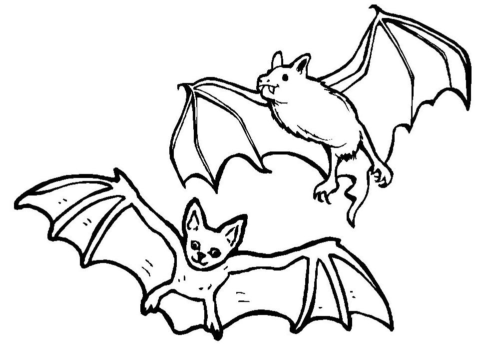 Disegno 23 di pipistrelli da stampare e colorare