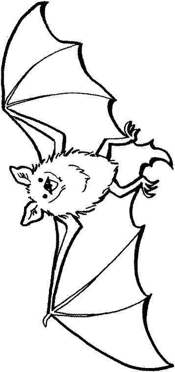 Disegni Da Colorare Pipistrelli.Disegno 24 Di Pipistrelli Da Colorare