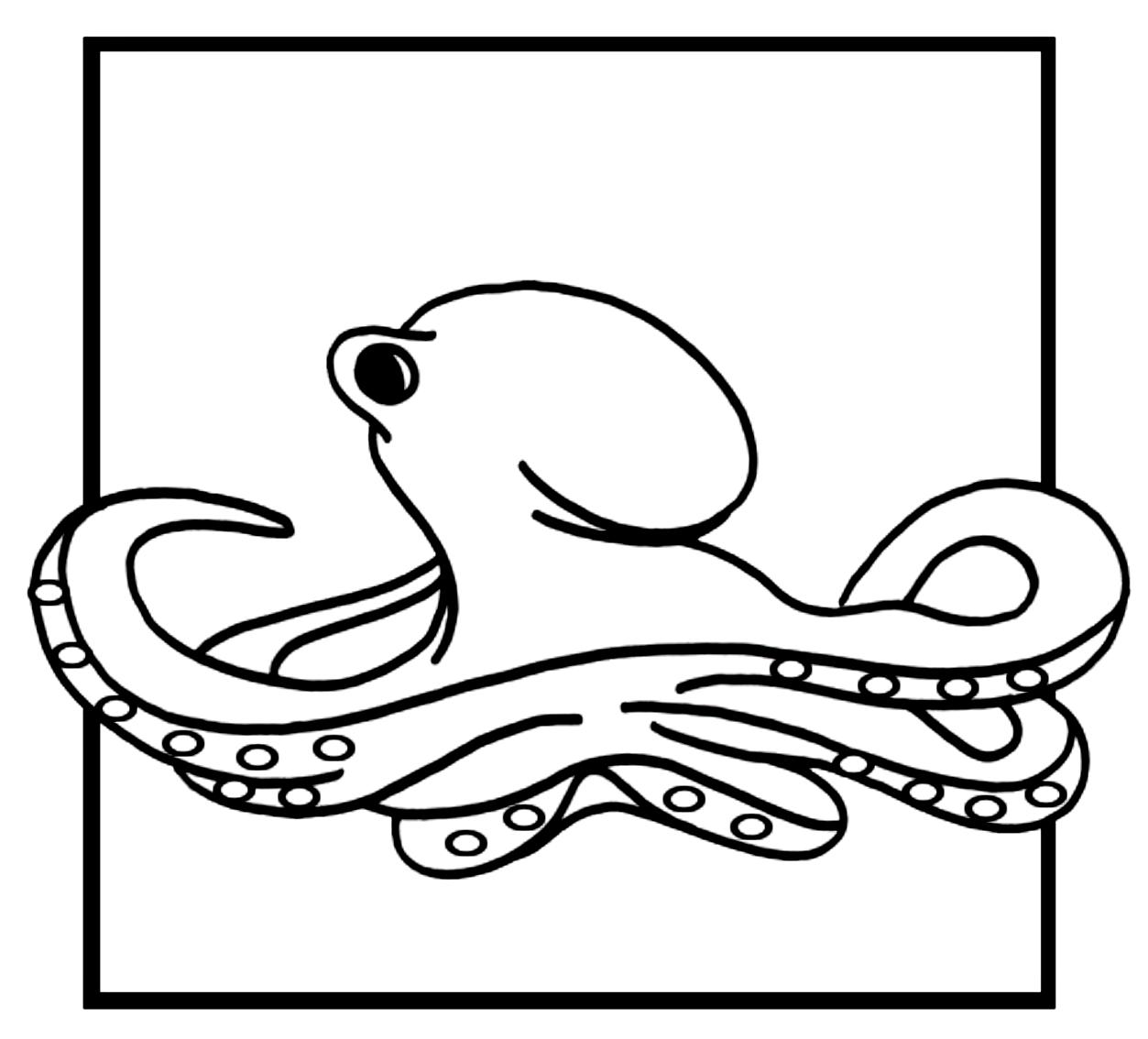 Coloriage13desOctopodes imprimeretcolorier