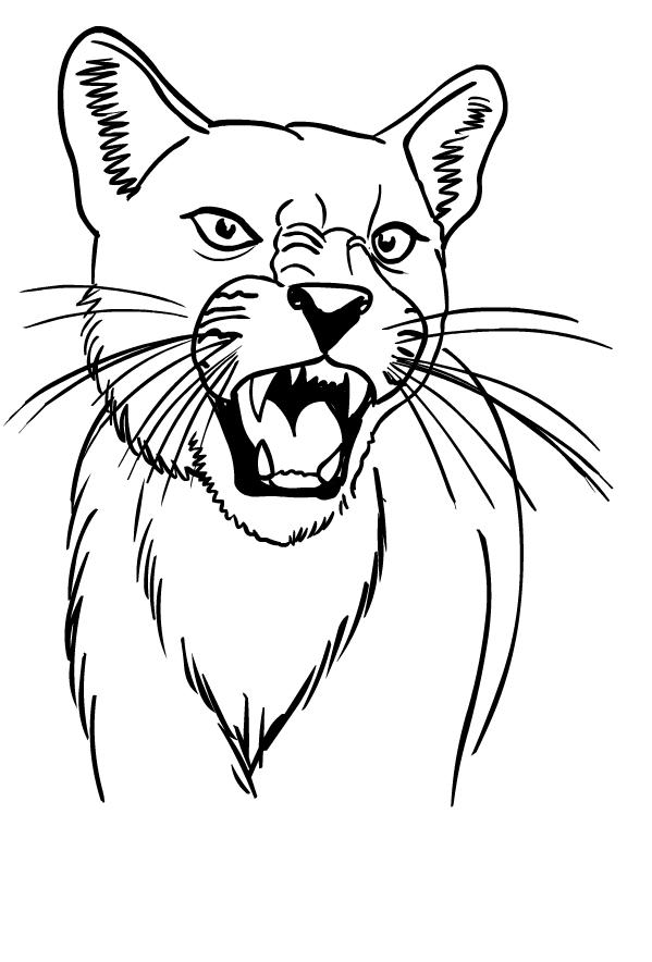 Página para colorear de puma para imprimir y colorear