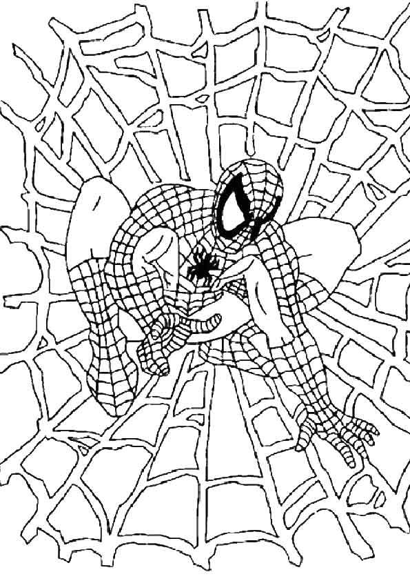Disegno Di Spiderman Sulla Ragnatela Da Colorare