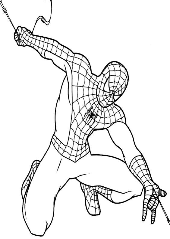 Disegno di spiderman sulla ragnatela da colorare Disegni spiderman da colorare gratis