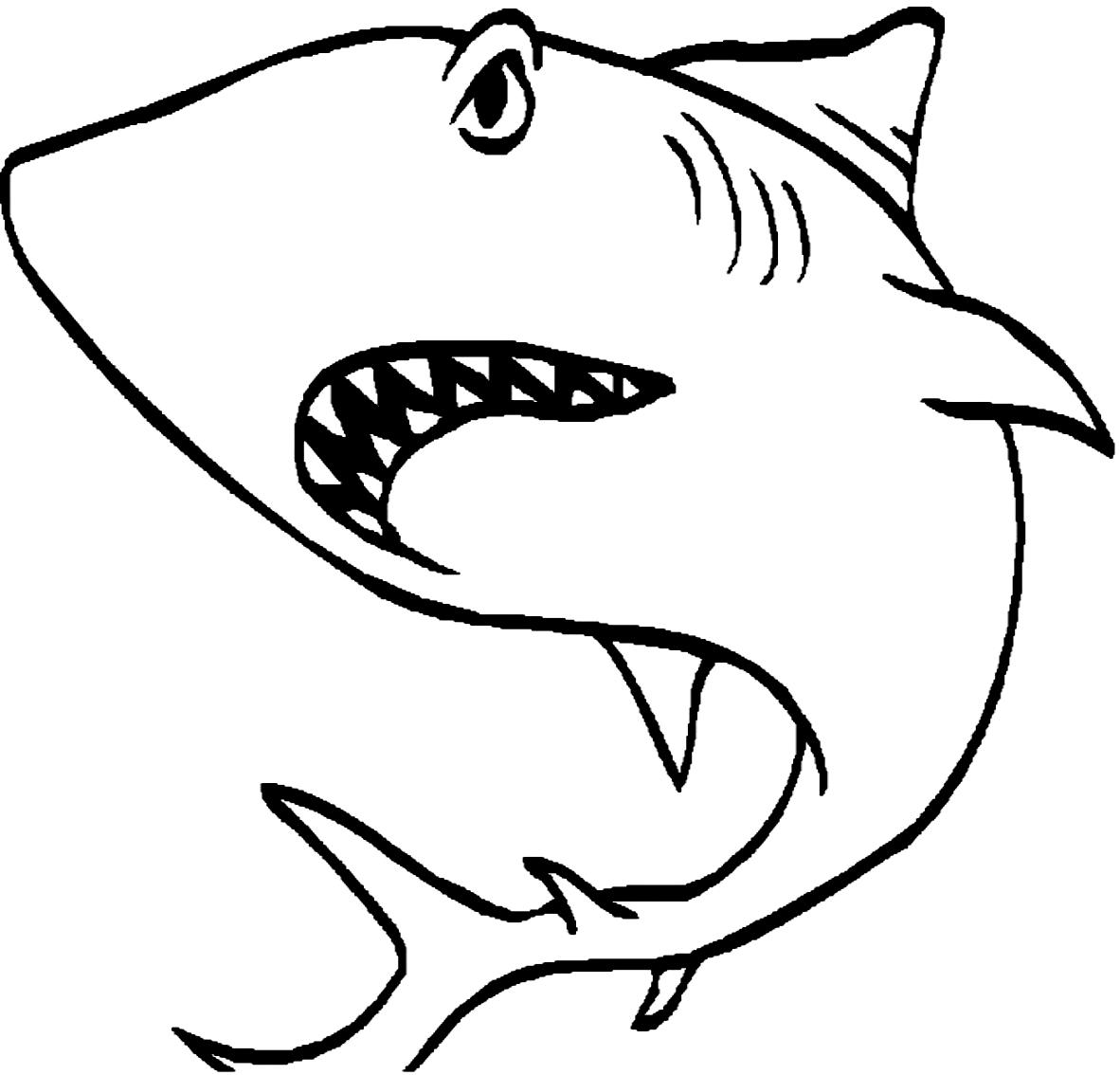 Disegno 1 di squali da stampare e colorare