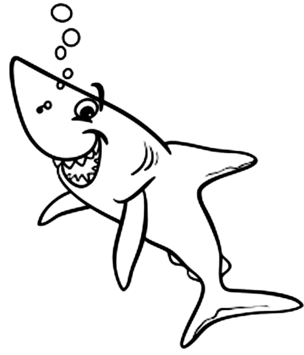 Disegno 20 di squali da stampare e colorare