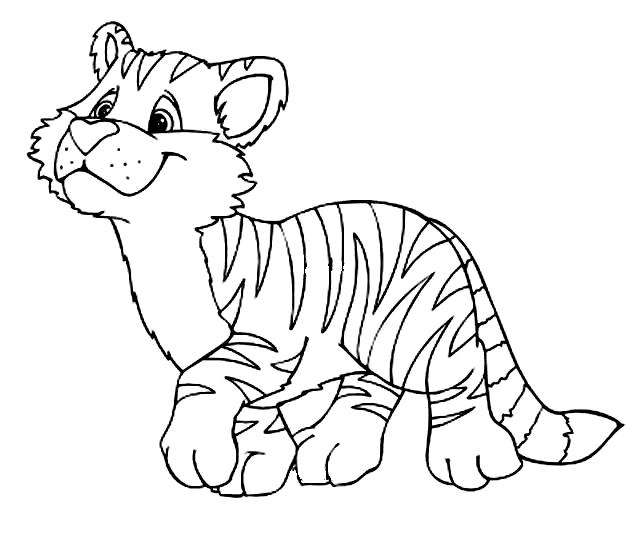 Disegno 16 di tigri da stampare e colorare