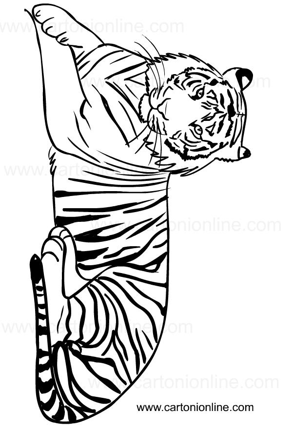 Disegno di tigri da stampare e colorare
