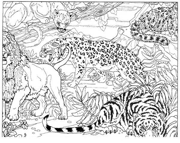 Disegno 22 di tigri da stampare e colorare