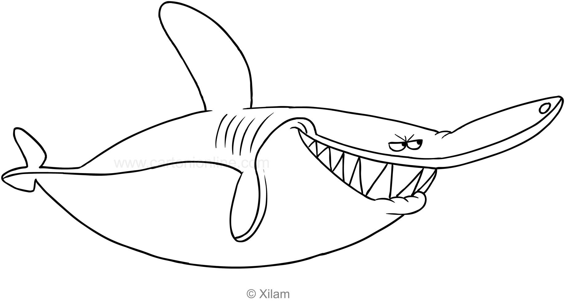 Disegno squalo da colorare migliori pagine da colorare for Disegno squalo bianco