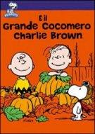 DVD 그것은 위대한 수박 찰리 브라운입니다