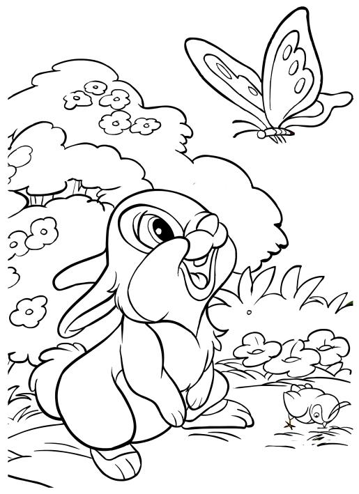 Thumper the rabbit coloring pages for Disegni da colorare walt disney