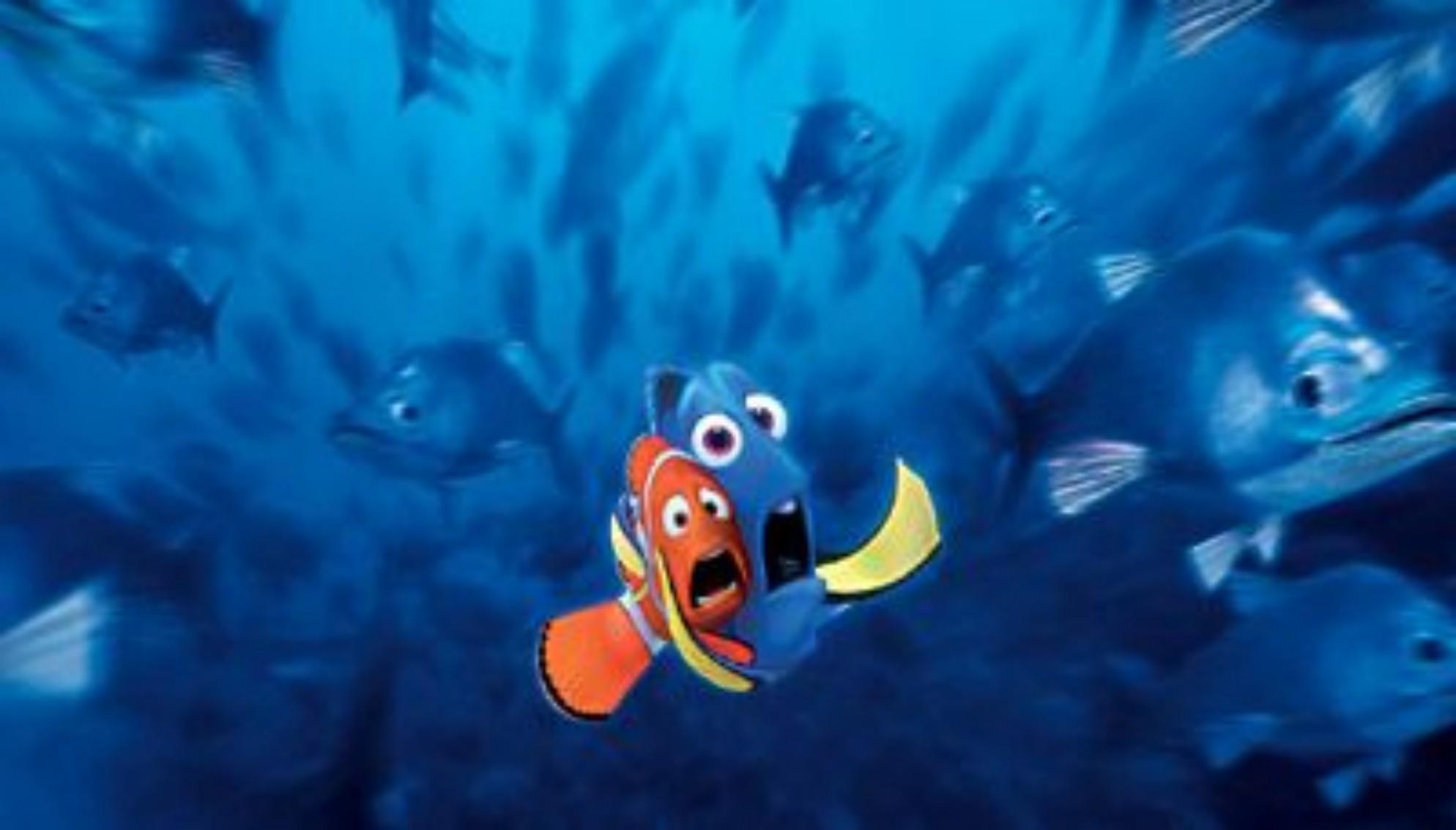 Immagini alla ricerca di nemo merlin e dory terrorizzati for Immagini dory