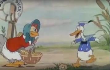 Kaczor Donald - mądry mały kurczak