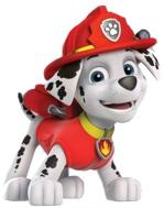 il cane Marshall - Paw Patrol