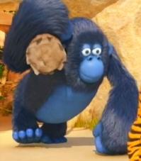 Vita da giungla: Miguel il gorilla