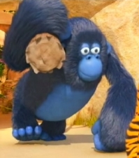 Jungle-leven: Miguel de gorilla