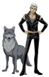Tsume y el lobo gris