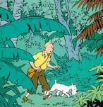 Tintin dans la jungle