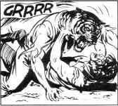 호랑이 남자에 대한 Zagor
