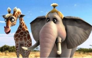 长颈鹿吉塞拉和大象安吉-动物联