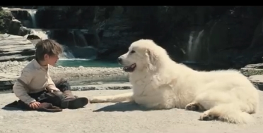 Belle e sebastien il film