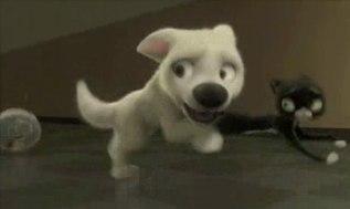 Bolt, Rhino e Mittens scappano all'interno del canile