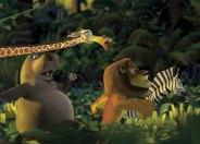 Los protagonistas de Madagascar se escapan a la jungla