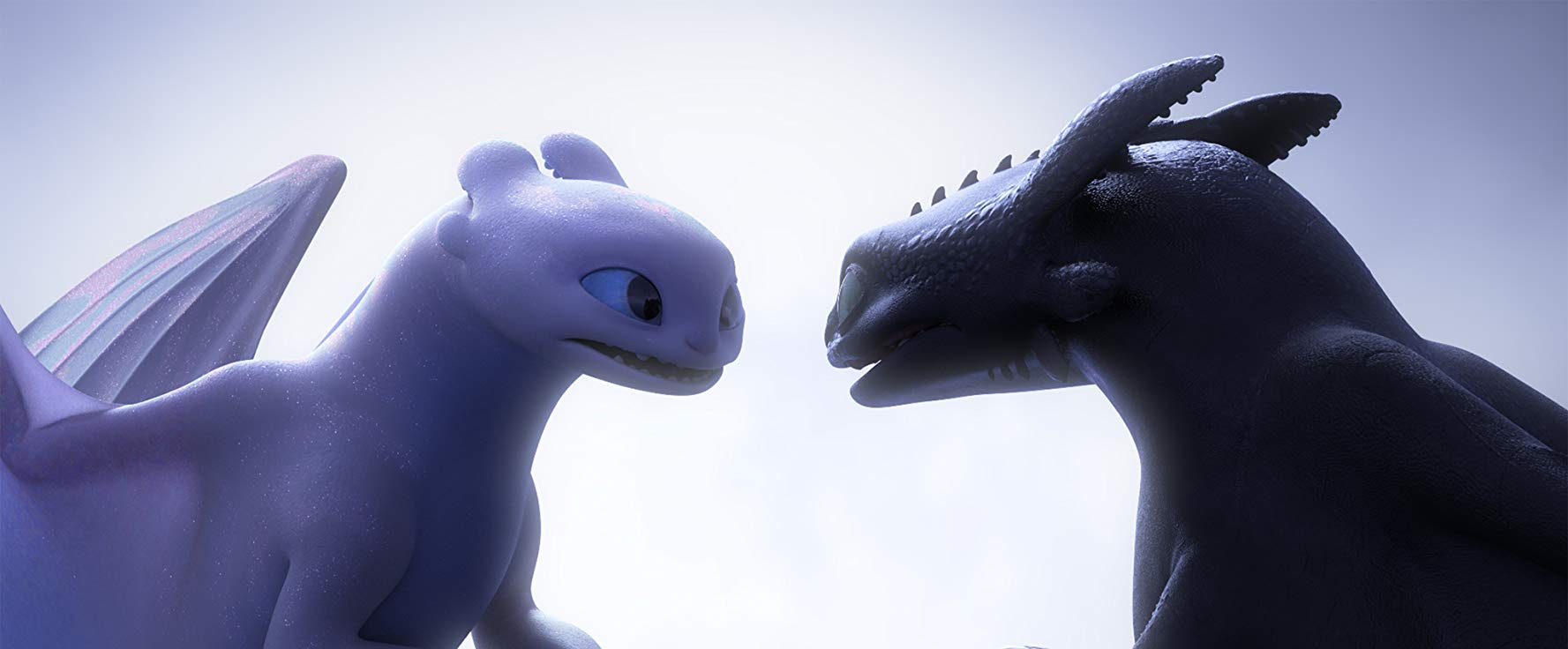Toothless and Light Fury - Dragon Trainer The hidden world