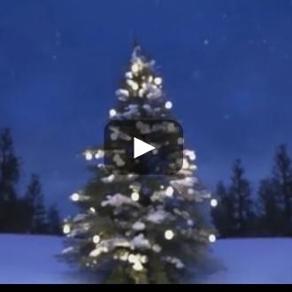 크리스마스 스타-크리스마스 스타-애니메이션 단편 영화