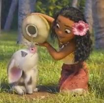 Vaiana et le porcelet Pua