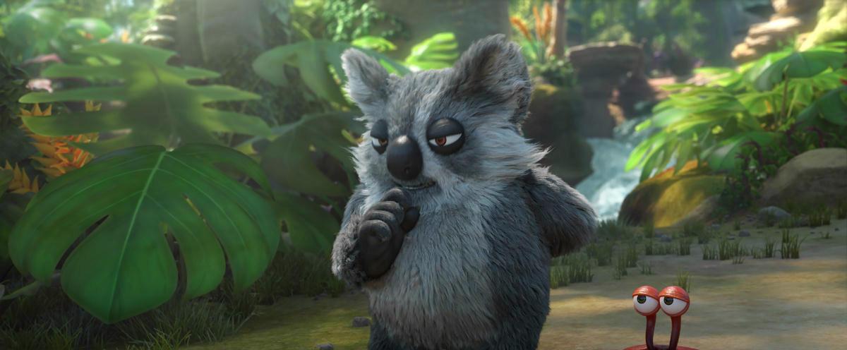 Igor le Koala
