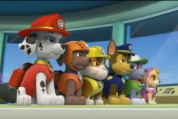 Cartoni animati per bambini paw patrol italiano camion dei